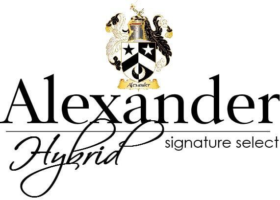 Alexander Hybrid Mattress Review - Girl on the Mattress