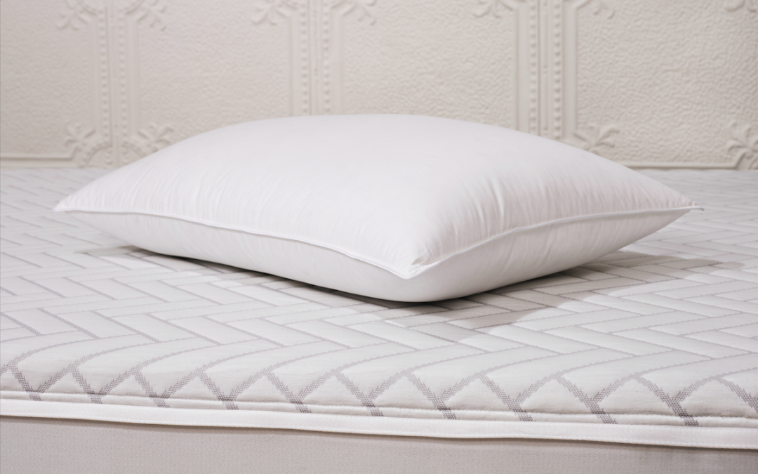 wright-duck-down-pillow-review