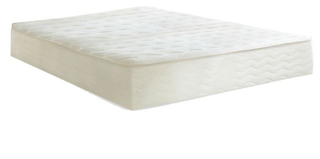 plushbeds botanical bliss review, plushbed reviews, plushbed latex mattress, Plushbeds Botanical Bliss Mattress Review