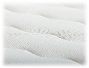plushbeds mattress reviews, plushbeds botanical bliss mattress review, cover